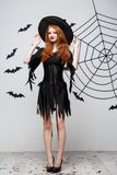 Halloween witch concept - Full-length of Happy Halloween Witch holding posing over dark grey studio background with bat. And spider web stock photo