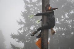Halloween witch crashing into a telephone pole Royalty Free Stock Photos