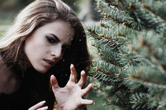 Halloween Witch in a dark forest. Beautiful young woman in witches costume . Halloween art design. Horror Background For Halloween Stock Photos