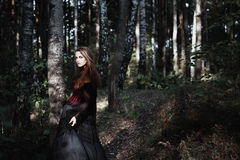 Halloween Witch in a dark forest. Beautiful young woman in witches costume . Halloween art design. Horror Background For Halloween Royalty Free Stock Photos