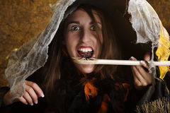 Halloween witch eating a spider Stock Images