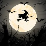Halloween witch in front of full moon Royalty Free Stock Photos