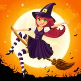 Halloween Witch Royalty Free Stock Photos