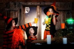 Halloween.The witch prepares a potion and bring your friends. stock image