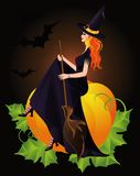 Halloween Witch and pumpkin,  Stock Photos