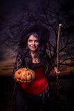 Halloween witch a pumpkin Royalty Free Stock Photos