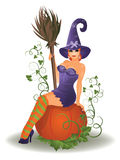 Halloween witch and pumpkin, vector Stock Photos