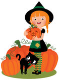 Halloween witch with pumpkins Royalty Free Stock Photography