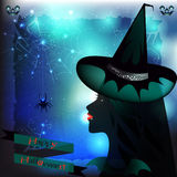 Halloween Witch and Spider Royalty Free Stock Images