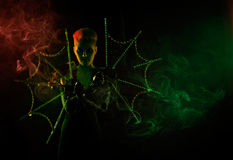 Halloween witch with spider web Stock Photography