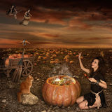 Halloween and witches. Royalty Free Stock Photos
