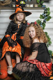 Halloween witches Royalty Free Stock Images