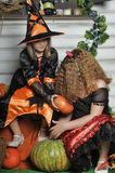 Halloween witches Stock Photos