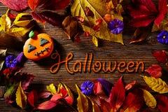 Halloween written word pumpkin fall background Stock Photos