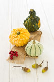 Halloween y decoración del otoño con las calabazas Imagenes de archivo