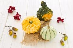 Halloween y decoración del otoño con las calabazas Foto de archivo libre de regalías