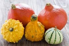 Halloween y decoración del otoño con las calabazas Imágenes de archivo libres de regalías