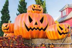 Halloween, zucche e paesaggio di Halloween Fotografia Stock Libera da Diritti