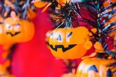 Halloween, zucche e paesaggio di Halloween Fotografia Stock