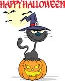 Halloween Zwarte Cat With een Heksenhoed op Pompoen Stock Fotografie