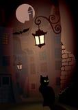 Halloween2. Demonic cat on a street, perfect illustration for Halloween Stock Photo