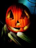 Halloweenowa Bania royalty ilustracja