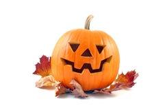 Halloweenowa bania. obrazy stock