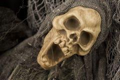 Halloweenowa czaszka Zdjęcia Royalty Free