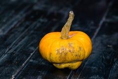 Halloweenowa dyniowa dźwigarka na ciemnym drewnianym tle Pojęcie h obrazy royalty free