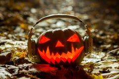 Halloweenowa dyniowa dźwigarka na czarnym tle fotografia royalty free