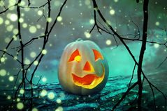 Halloweenowa dyniowa straszna dźwigarka lampionu głowa w tajemniczym mgłowym lesie przy straszną nocą Zdjęcie Royalty Free