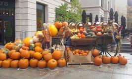 Halloweenowa panorama Zdjęcia Royalty Free