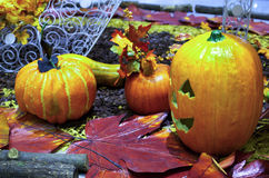 Halloweenowa scena Zdjęcia Royalty Free