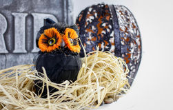 Halloweenowa sowa Fotografia Royalty Free