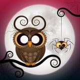 Halloweenowa wakacyjna szalona sowa Fotografia Stock