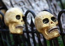Halloweenowe żółte czaszki Obraz Royalty Free