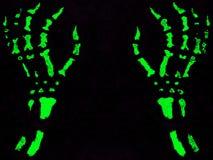 Halloweenowe ręki Zdjęcie Stock