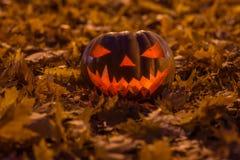 Halloweenowego tła Nowe fotografie obrazy royalty free