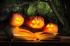 Halloweenowi lampiony Czyta Straszną opowieść fotografia stock