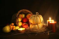 Halloweenowi pumkins fotografia royalty free
