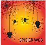 Halloweenowy bezszwowy wzór z ślicznym pająkiem i siecią obraz royalty free