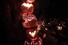 Halloweenowy blask Zdjęcia Royalty Free