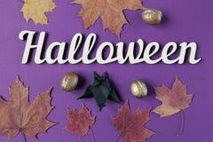 Halloweenowy dekoracja tekst, liście klonowi i Odgórny widok Fotografia Royalty Free