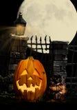 Halloweenowy Dyniowy kota pająk zdjęcie stock