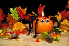 Halloweenowy dyniowy pająk w liściach Obraz Royalty Free