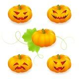 Halloweenowy dyniowy set Zdjęcia Stock