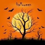 Halloweenowy dzień z drzewami, nietoperzami i księżyc w pełni, Obrazy Stock