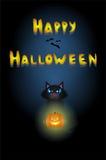 Halloweenowy kot Zdjęcie Stock