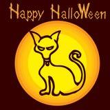 Halloweenowy kot Zdjęcia Stock