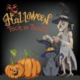 Halloweenowy kot w czarownica kapeluszu siedzi przeciw księżyc w pełni przy nocą Blisko miotły, bani z cukierkami i liści, ilustracji